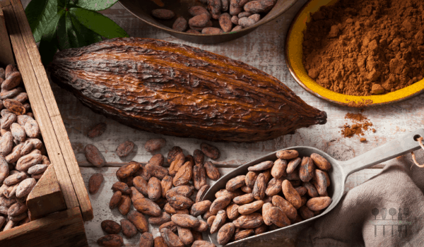 Image of different forms of Cacao