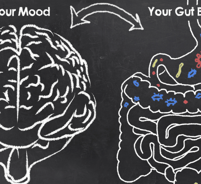 Gut Microbiome 101: How the Gut is the Key to Health
